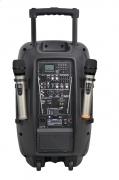 Aura A212MP3-Battery Активная акустическая система