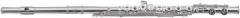 Флейта ROY BENSON FL-602Е Ми-механика, не в линию, посеребренная