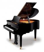 Рояль механическийRitmuller GP148R1