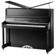 Пианино механическое Ritmuller R2