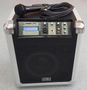 Soundking PA8M Акустическая система с MP3 и микрофоном, портатив