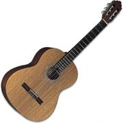 Гитара классическая GREG BENNETT C1
