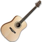 Гитара акустическая GREG BENNETT ASDM